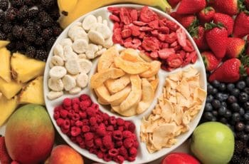 Freeze-Dried versus Dehydrated Foods