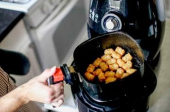 What You Should Know About Air Fryers